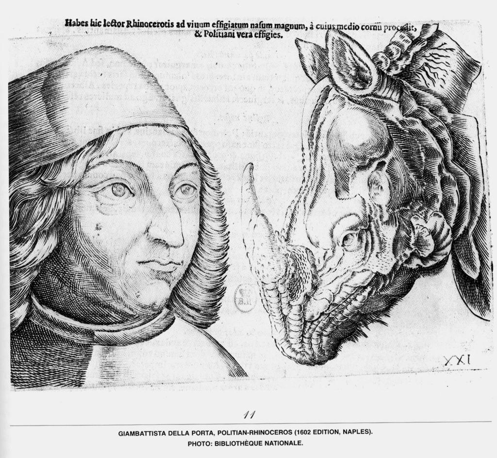 Aberraciones_Giambattista Della Porta- Político y Rinoceronte