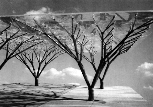 frei otto_Tree Structures 1960