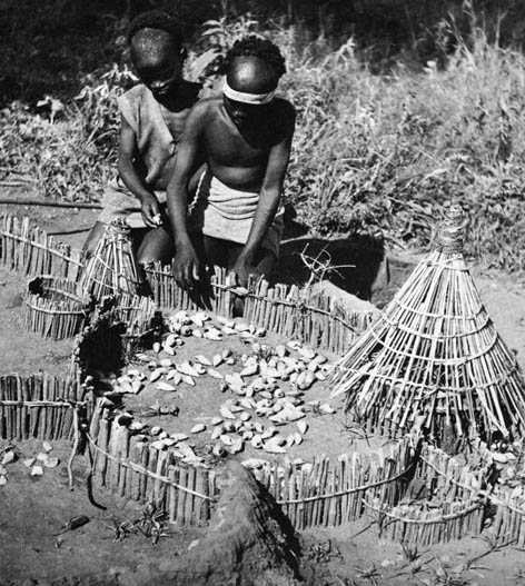 juego etiope